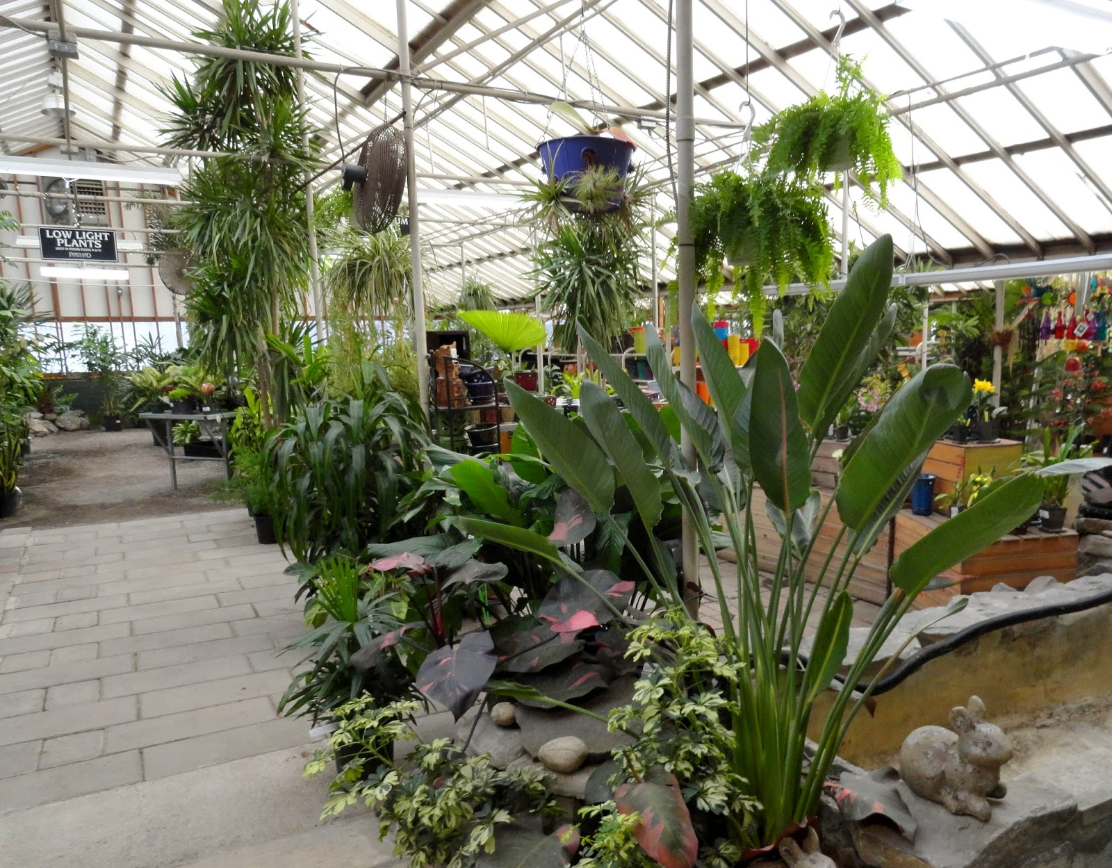 With All The Houseplants And Decorative Pottery 30 Off This Coming Weekend At Both Portland Nursery Locations It S A Great Time To Visit