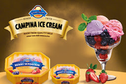 Lowongan Kerja PT Campina Ice Cream Industry Tbk Tahun 2019