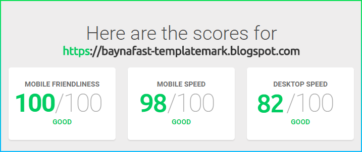 Bayna Fast Google speed score