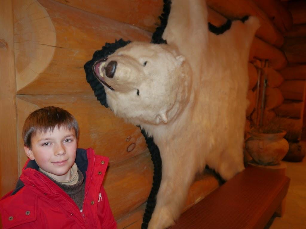 Hotel Sacacomie Québec Parc de la Mauricie animaux ours