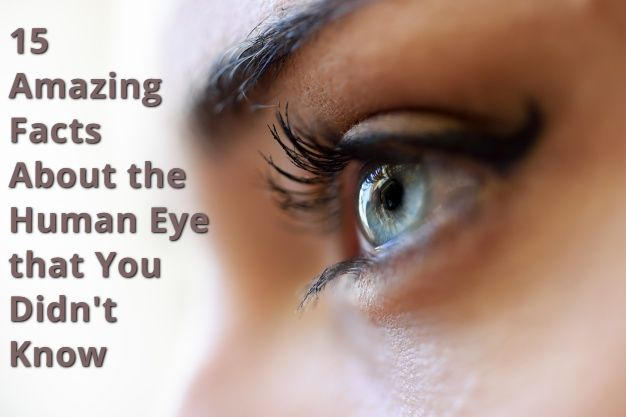 15 Amazing Facts About the Human Eye that You Didn't Know
