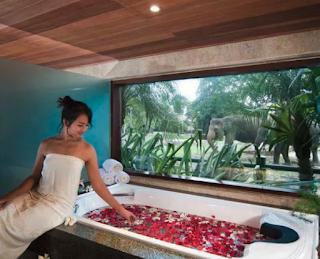 Tempat Best Spa In Bali Seminyak Spaongo