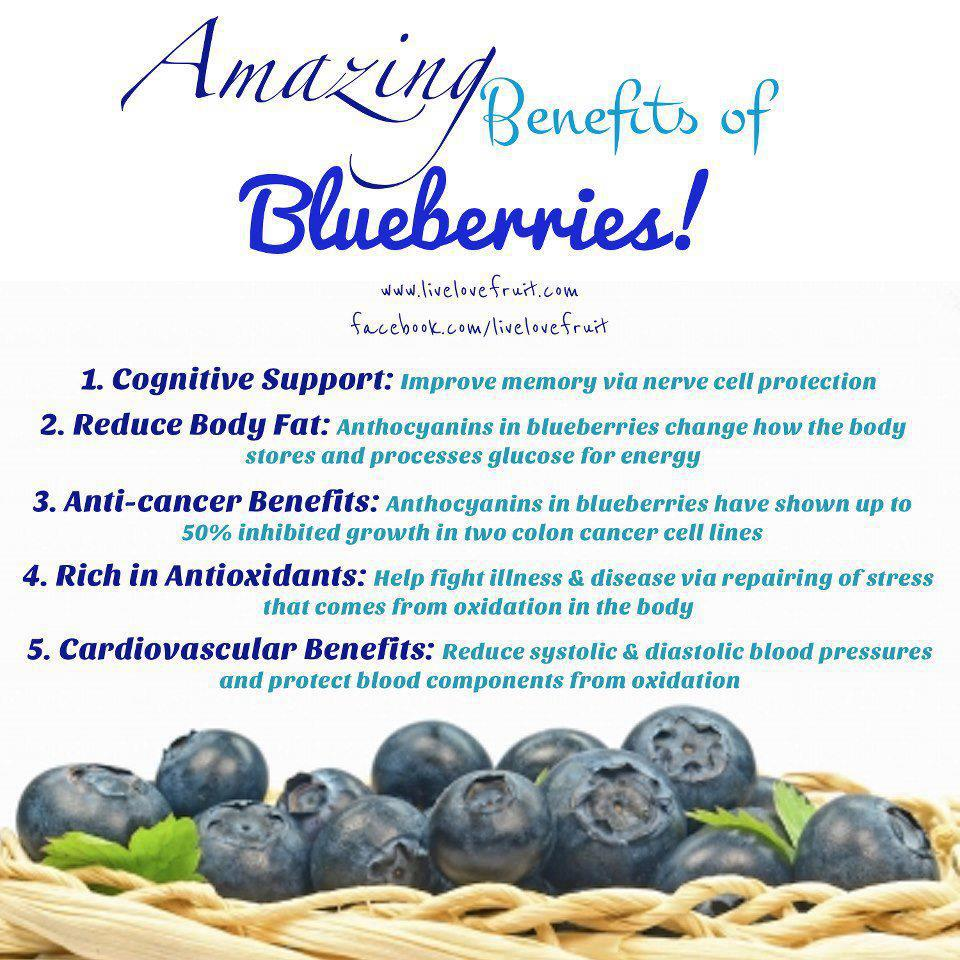 9 Ways Blueberries Boost Brain Function - DrJockers.com   Blueberry Medicinal Uses