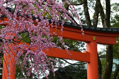 Santuário xintoísta Jonangu, Fushimi em Quioto