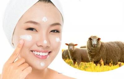 Thành phần nhau thai cừu trong mỹ phẩm Sakura
