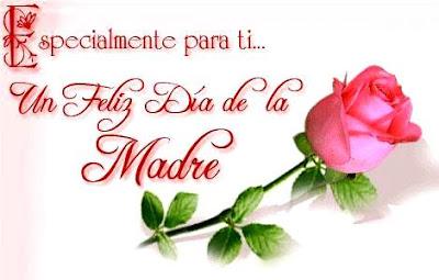Foto de una rosa con dedicatoria a la madre