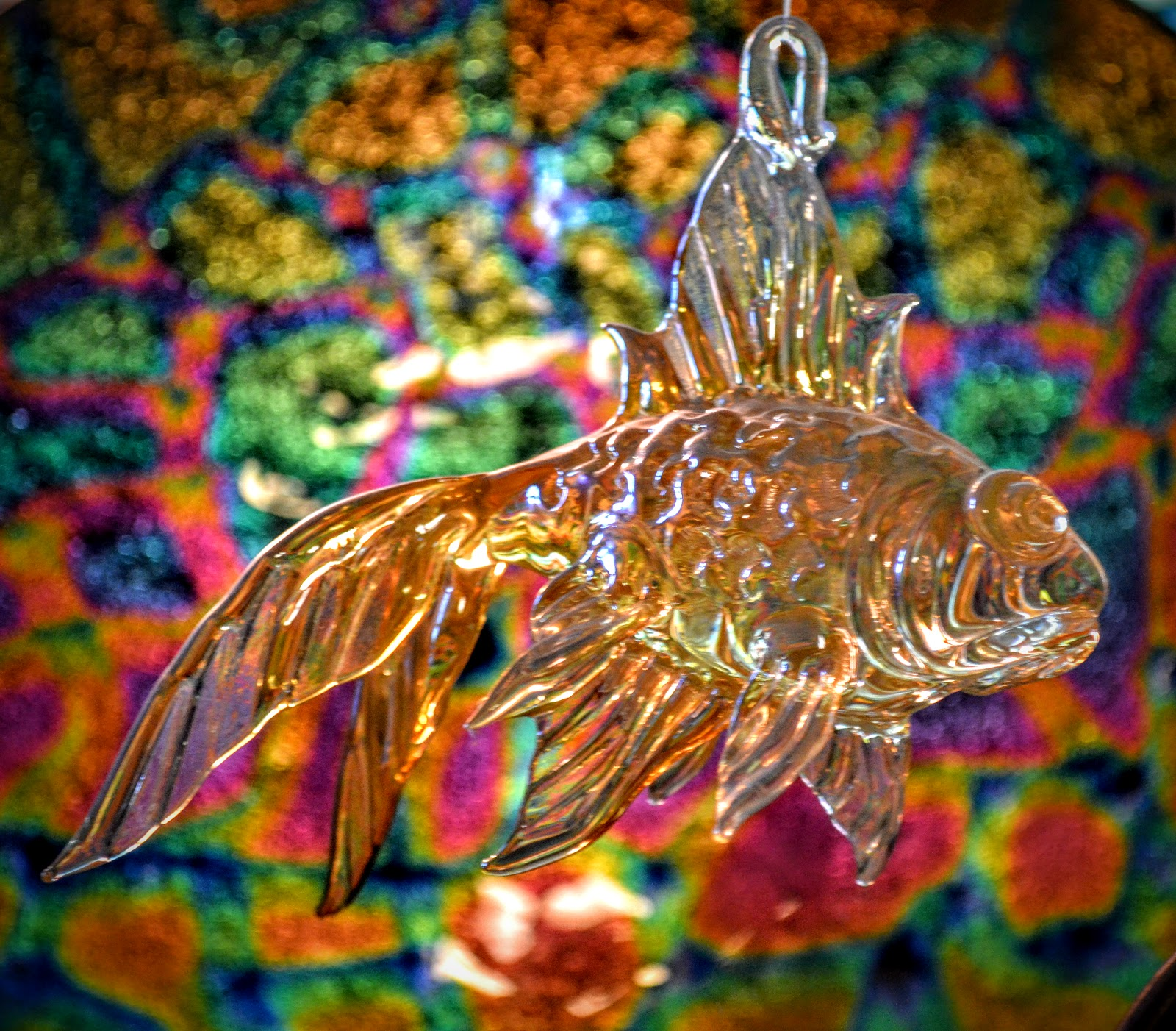 The Outlaw Gardener: Wednesday Vignette: How is a Colorful Fish Like ...