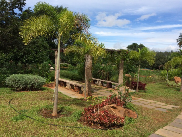 Sivananda Ashram Madurai Garden