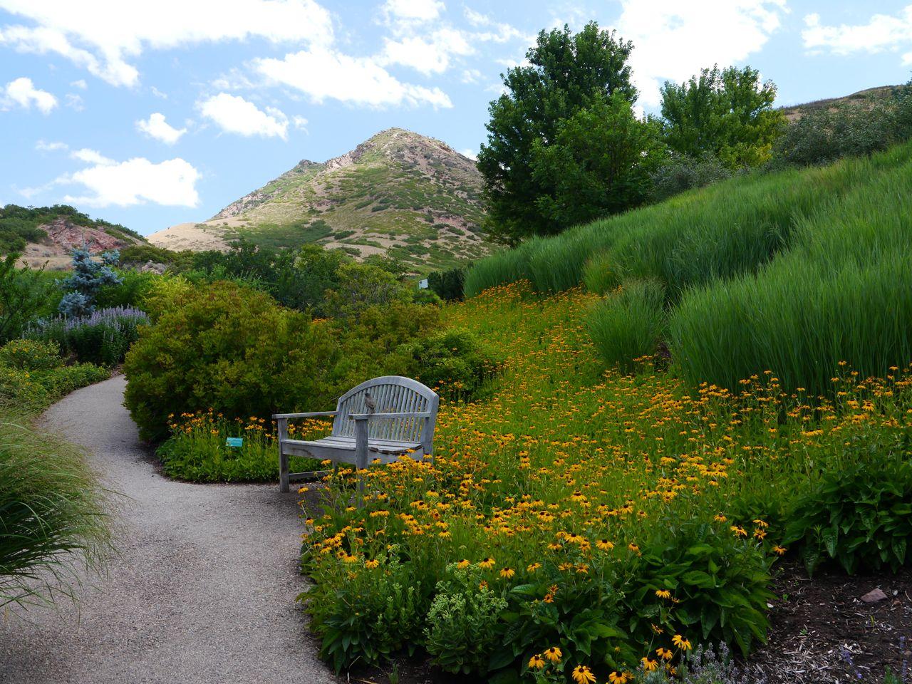 Rock Rose Red Butte Gardens Salt Lake City
