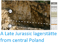 http://sciencythoughts.blogspot.co.uk/2013/11/a-late-jurassic-lagerstatte-from.html