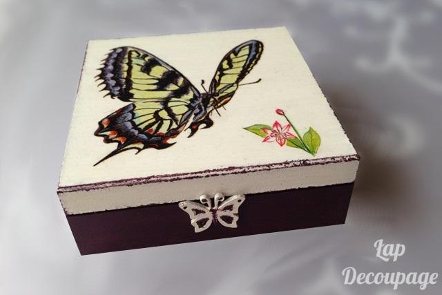 Motyle w fiolecie