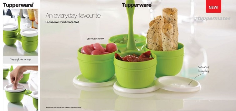 tupperware chennai tupperware india flyer august 2016. Black Bedroom Furniture Sets. Home Design Ideas