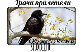 StudioLeto