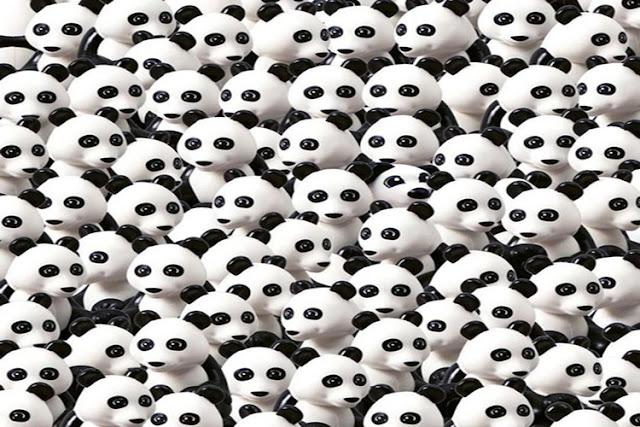panda dhoodhiye, puzzle solve, riddles, solve this problem, is tasveer me pehchaniye jara