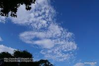 秋の気配の雲の写真