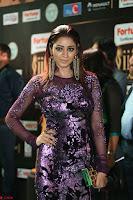 Shilpi Sharma looks Glamorous in Transparent Purple Glittering Gown at IIFA Utsavam Awards 007.JPG