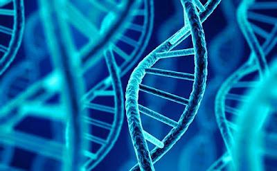 Pinzas capaces de extraer moléculas de ADN sin dañarlas-TuParadaDigital