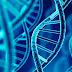 Pinzas capaces de extraer moléculas de ADN sin dañarlas