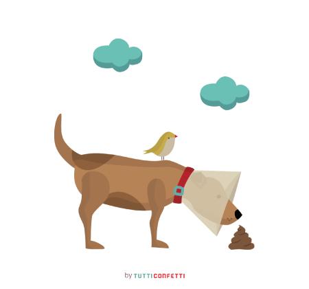 Ilustración | Tutticonfetti