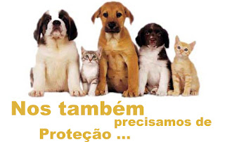 Os animais também precisam de proteção