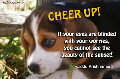 cheer up dog