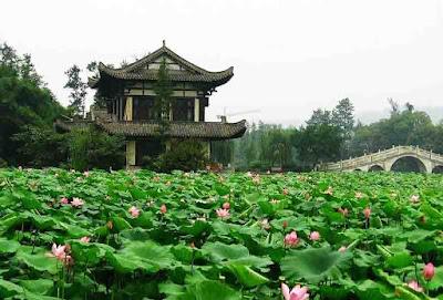 LLotus Mountain - Salika Travel - Paket 5D Hongkong Shenzhen Macau
