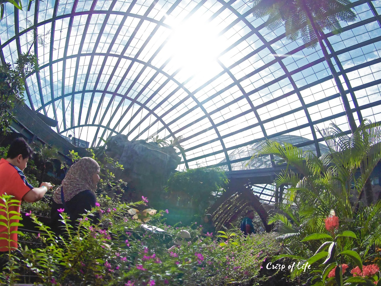 Discover the Tropical's Denizens in Entopia @ Teluk Pahang, Penang
