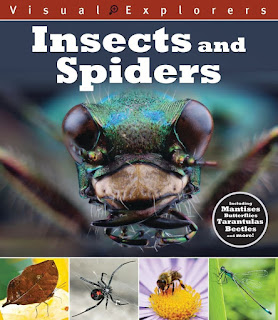 Visual Explorers: Insects and Spiders