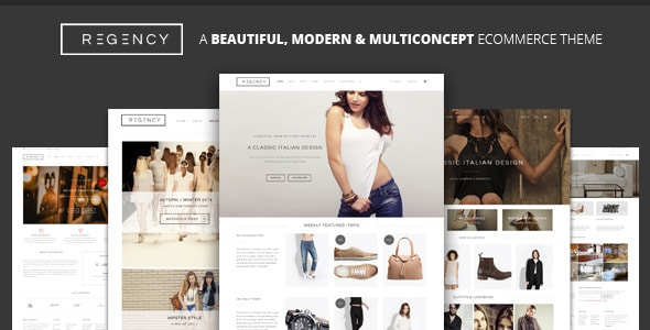 WordPress Ecommerce Themes - Regency