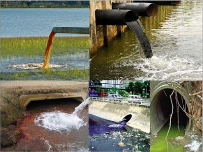 asas subsidiritas pidana lingkungan hidup