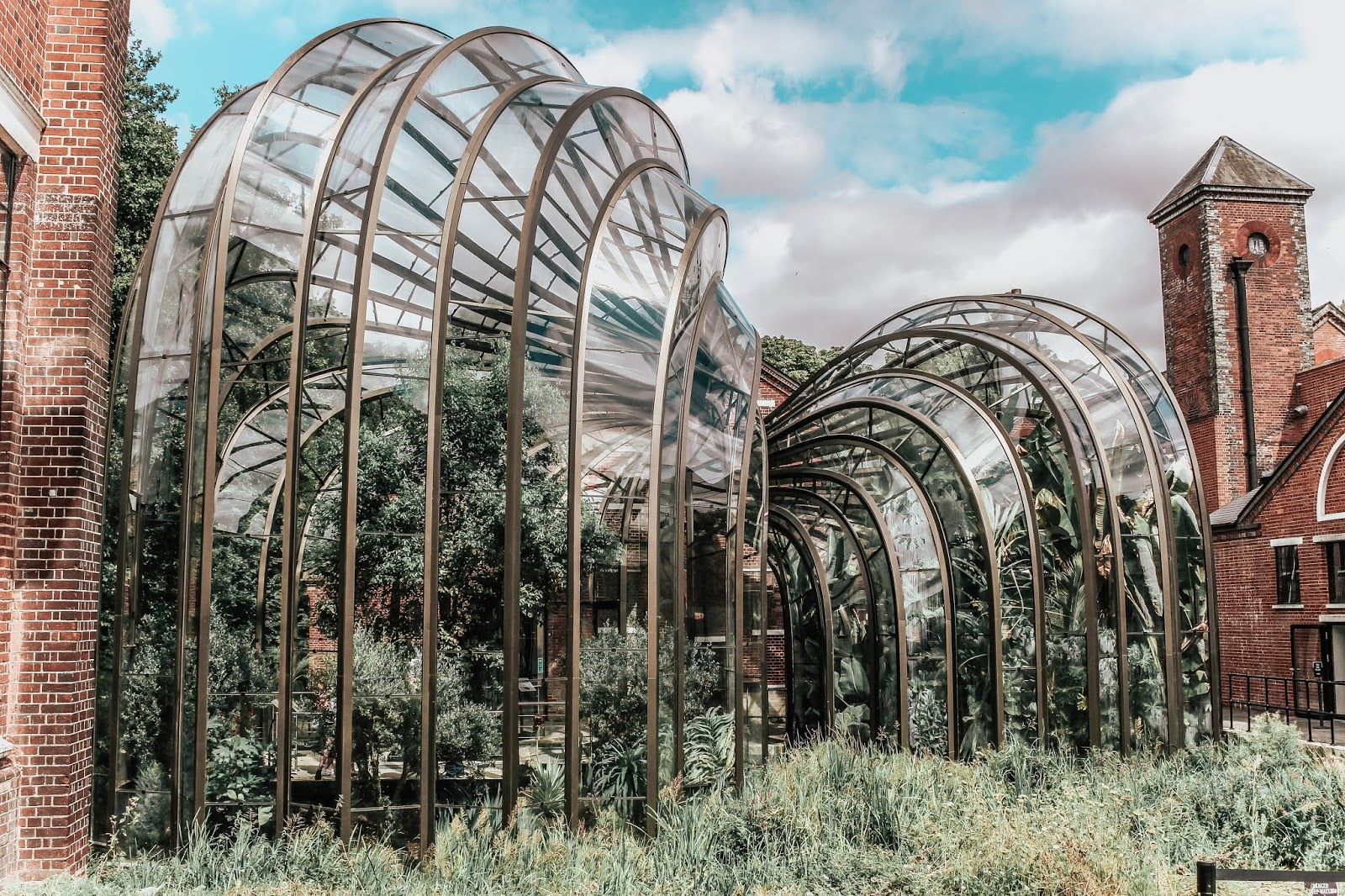 Bombay Sapphire Twin Glasshouses Travel Photography