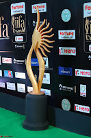 Celebrities sizzling Exclusive Pics at IIFA Utsavam Awards 2017  Day 2  HD Exclusive 06.JPG