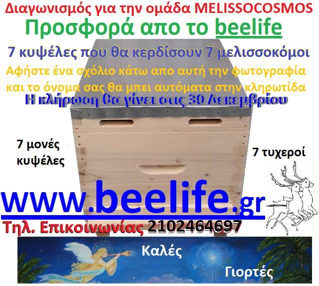 Έγινε η κλήρωση των 7 κυψελών προσφορά από το Beelife.gr: Αυτοί είναι οι τυχεροί...