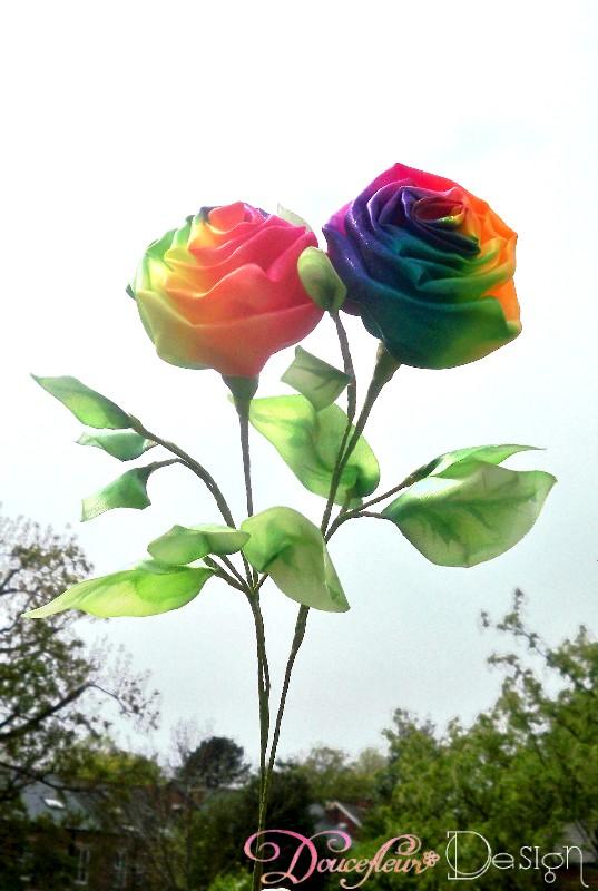 Rose Arc En Ciel : Doucefleur, Design:, Rainbow, Roses