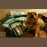 Best bully sticks .com review