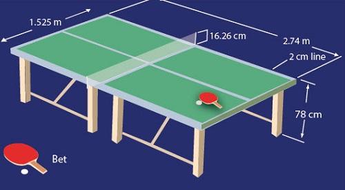 Gambar Dan Ukuran Lapangan Tenis Meja Lengkap