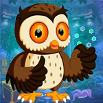 Games4king Night Owl Rescue