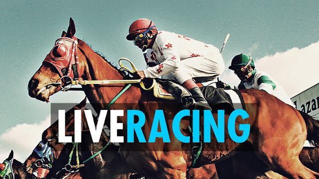 Horse Racing Live 24