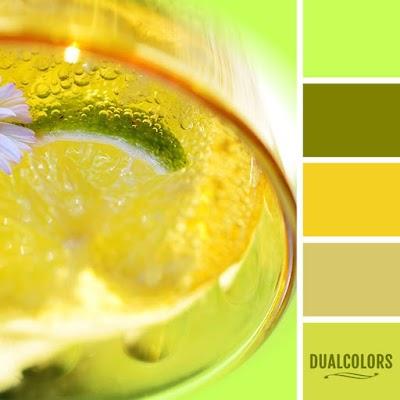 Color Paleta 152