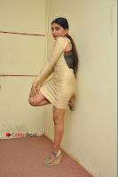 Actress Pooja Roshan Stills in Golden Short Dress at Box Movie Audio Launch  0149.JPG