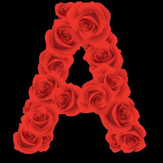 Abecedario Hecho con Rosas Rojas. Red Roses Alphabet.