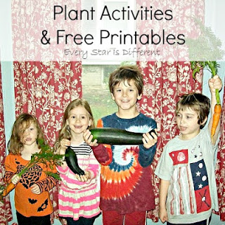 Plant activities.