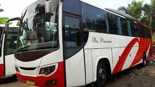 Sewa Bus Untuk Akhir Tahun, Sewa Bus Murah, Sewa Bus Wisata