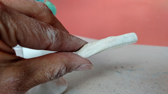 shell used for nail design