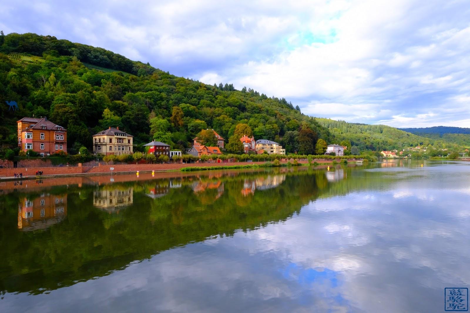 Le Chameau Bleu - Blog Voyage Heildeberg Allemagne - Reflet sur le Neckar - Heidelberg