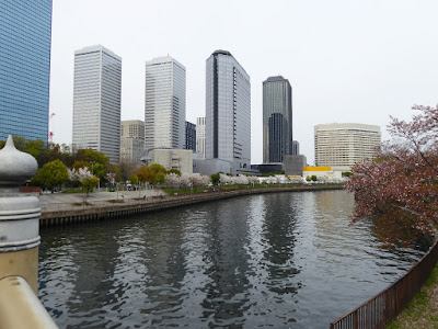 大阪ビジネスパーク、大川沿いの桜