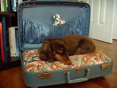 Cool and Creative Ways To Reuse Old Suitcases (20) 7