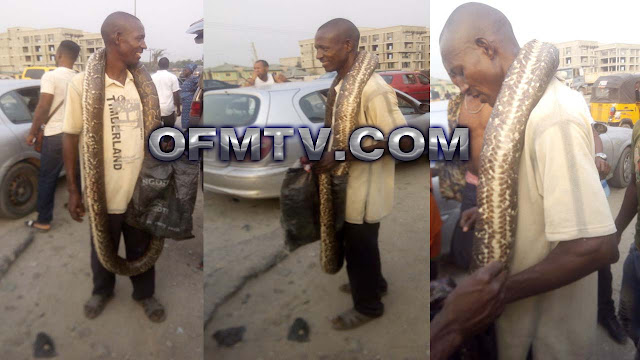 Snake Eating And Selling Trends In Africa, Nothing is spared