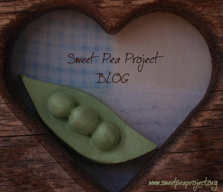 Sweet Pea Project Blog