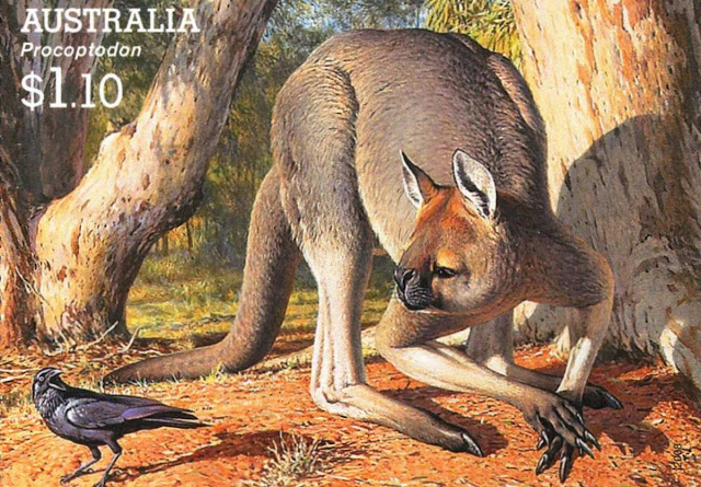 DNA find: Tiny wallaby the last living link to extinct giant kangaroos